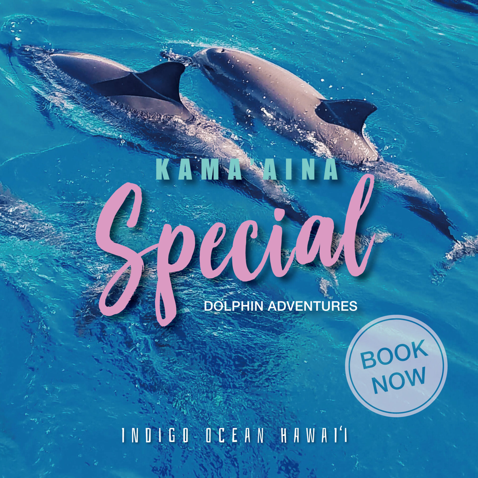 Kama'aina Special